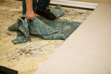 Water Soaked Carpet Pad