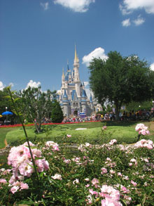 disney-clean-for-carpet-cleaners