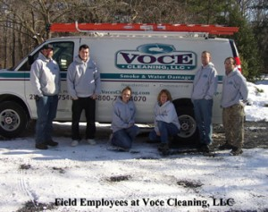 Voce_Cleaning_PA
