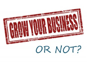 grow-your-business-or-not